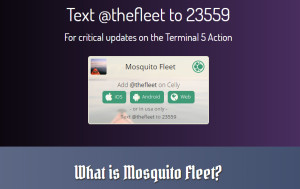 Mosquito-Fleet-Text-Blast